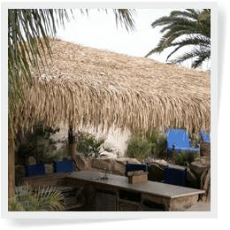 Palm Island Thatch Image