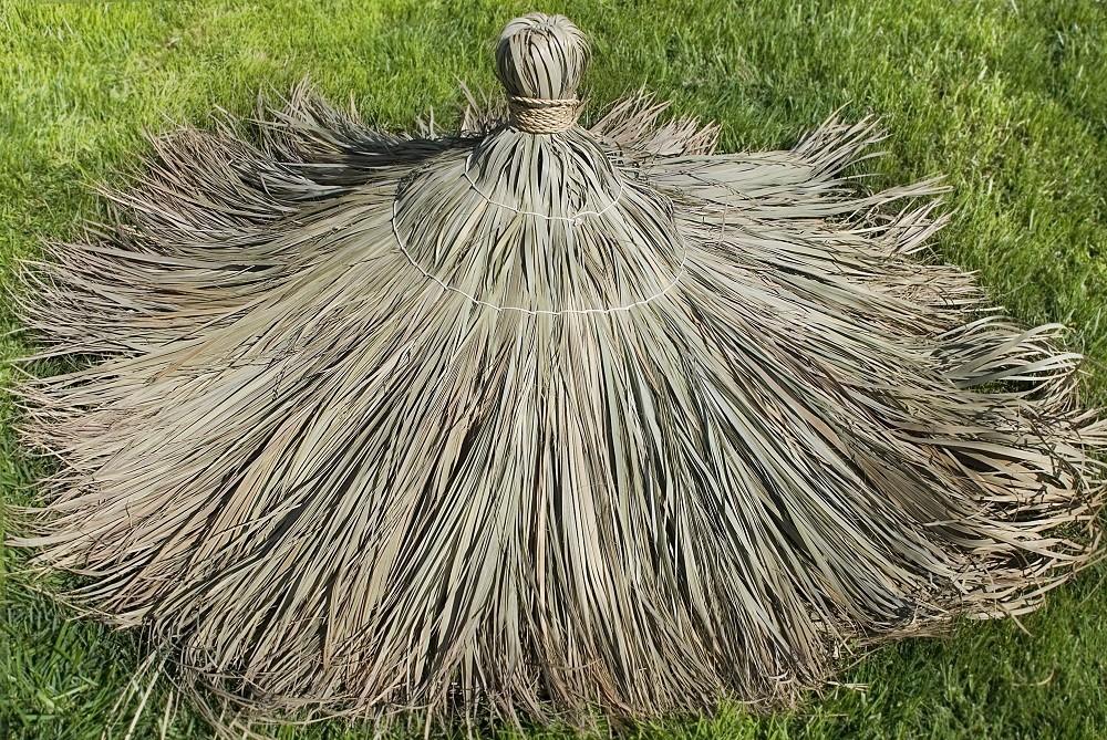 Tahitian Top Cone